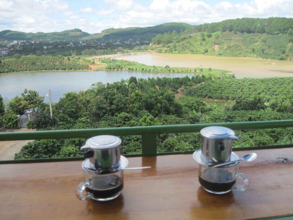 9. MangLinh Coffee plantation;