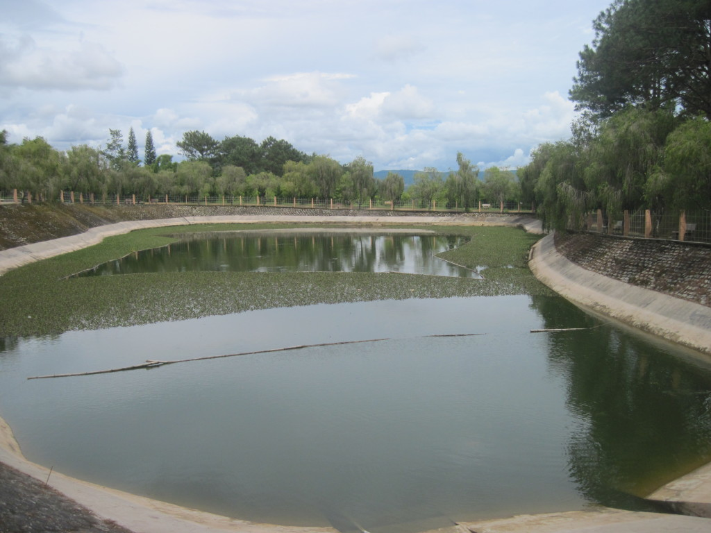 Пруд с рыбами и черепахами Монастырь Чук Лам (Тхиенвиен)