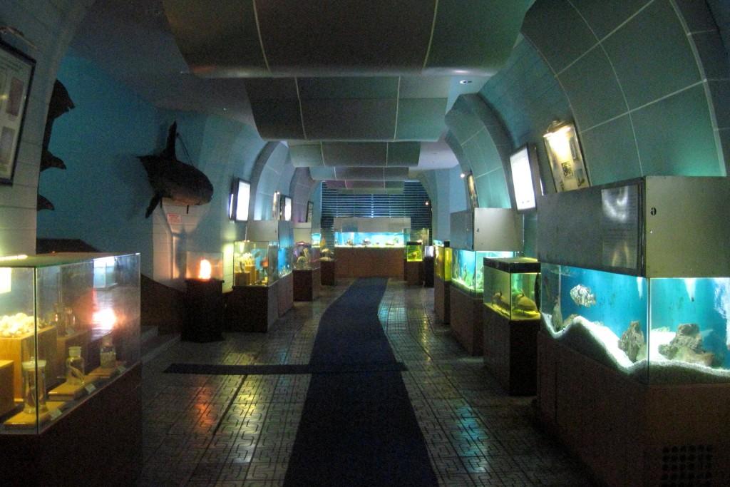 Океанариум Вьетнама