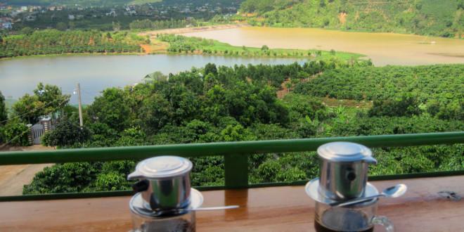 Кофейная плантация Далата