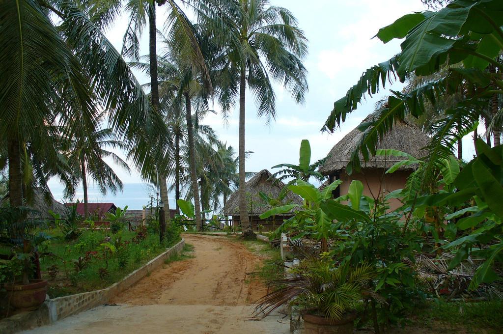 Отдых во Вьетнаме (Phu Quoc) 5