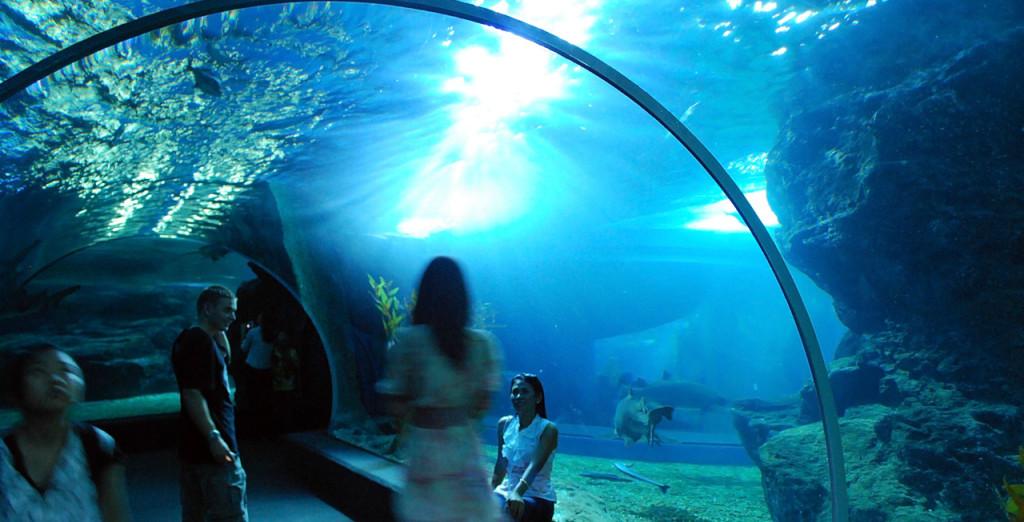 Aquarium in Pattaya