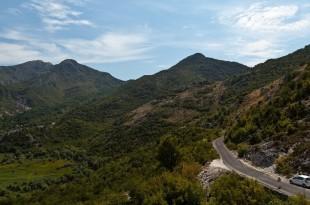 Белый слон агентство недвижимости черногория