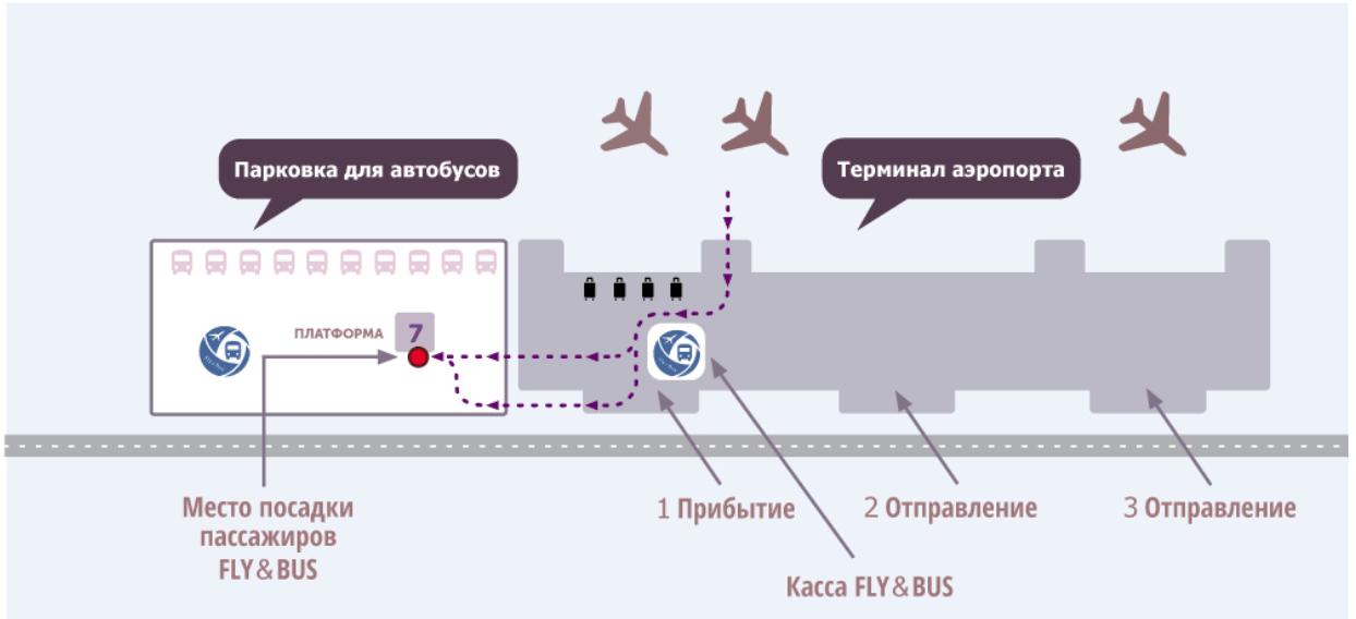 Схема движения на автобусы в аэропорту Симферополя